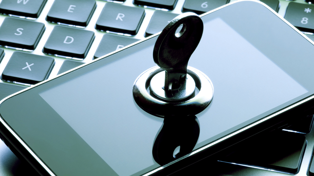 ants-padlocks-cybercrime-security